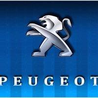 Peugeot Gemy
