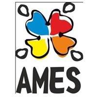 AMES-Associação para Mudança Empreendedora e Solidária