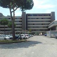 Ministero Dei Trasporti - Direzione Generale Motorizzazione -