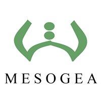Edizioni Mesogea Culture Mediterranee