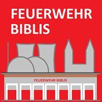 Freiwillige Feuerwehr Biblis