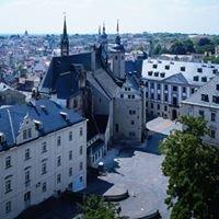Altenburg reizt