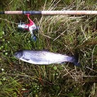 Annascaul fishing rod & tackle hire