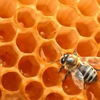 la ruche charentonnaise