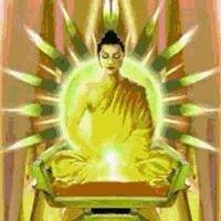 Shiva Yoga Peeth - Yoga Teacher Training in India