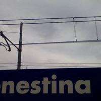 Prenestation lab - Centro di cultura Roma Prenestina