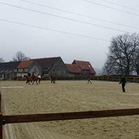 Pferdepension Hüdepohl