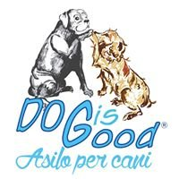 Asilo per Cani Dog is Good