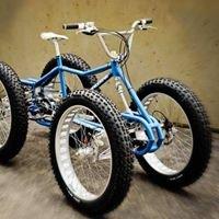 Scatto fisso & fat bike biciclette speciali