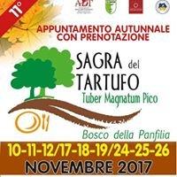Sagra del Tartufo di Sant'Agostino (Fe)