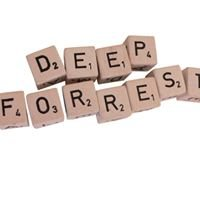 Deep Forrest