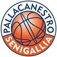 Pallacanestro Senigallia