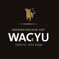 Wagyu Suedtirol