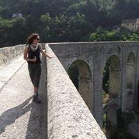Acquedotto storico di Genova
