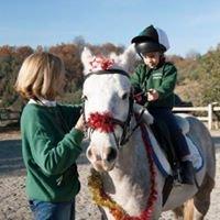 Pony Club Athlion Sabina
