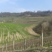 Azienda Agricola La Fusina
