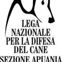 Lega Del Cane Massa