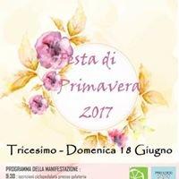 Festa di Primavera Tricesimo #Livefvg