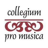 Associazione Musicale Collegium Pro Musica