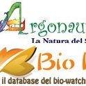 www.argonauti.org