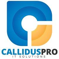 Callidus Pro - It Solutions