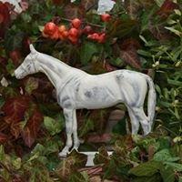 Element Horse, Zucht- und Sportpferde