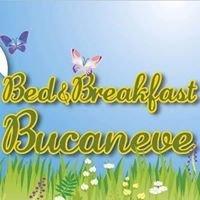 B&B Bucaneve