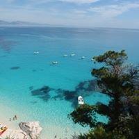 Think Sardinia