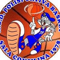 A.S.D. Polisportiva Basket Sala Consilina