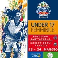 Mosciano - Roseto 2014 Finali Fip Under 17 Femminile