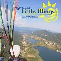 Aec Little Wings - Scuola Parapendio