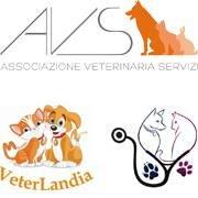 Associazione Veterinaria Servizi