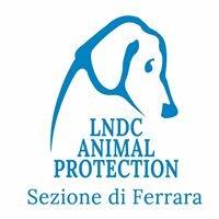 Lega del Cane Ferrara