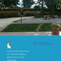 Centro Cinofilo Antico Fiume Allevamento del Jack Russell Terrier