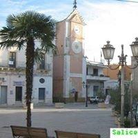 Salice Salentino - La Città Del Vino