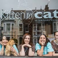 Kitten to Cat Veterinary Clinic