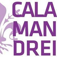 Istituto Paritario Calamandrei
