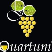Quartum Store
