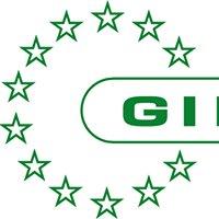 Gibertini Elettronica S.r.l.