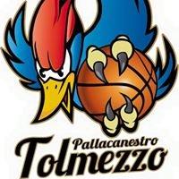 Pallacanestro Tolmezzo