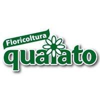 Floricoltura Quaiato