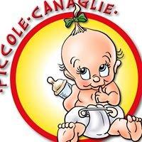 Nido Piccole Canaglie
