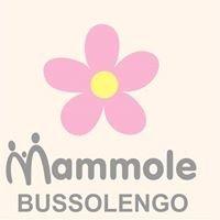 Le Mammole del Reparto Maternità Ospedale di Bussolengo - VR