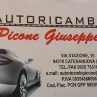 Autoricambi Picone