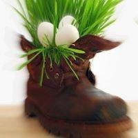 Ferder Schuhe