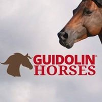 Guidolin Gianni - Guidolin Horses