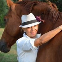 Raidho Healing Horses