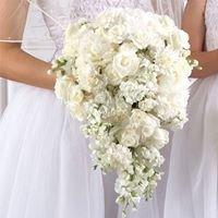 Matrimoni Perfetti