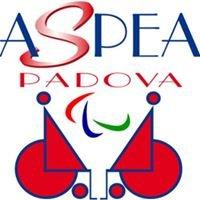 Aspea Padova Onlus
