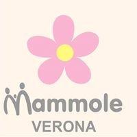 Le Mammole del Reparto Maternità Ospedale Maggiore di Verona